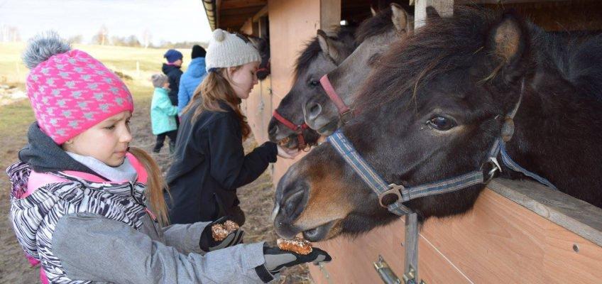 Ośrodek Jeździecki Lipowy Dwór