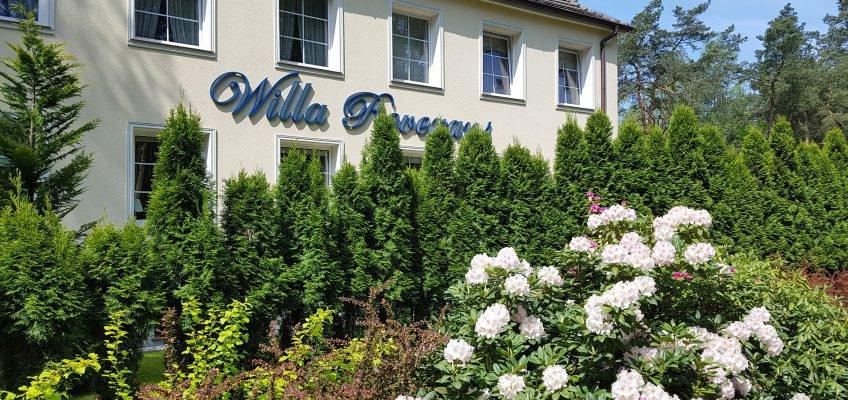"""""""Willa Reverans"""""""